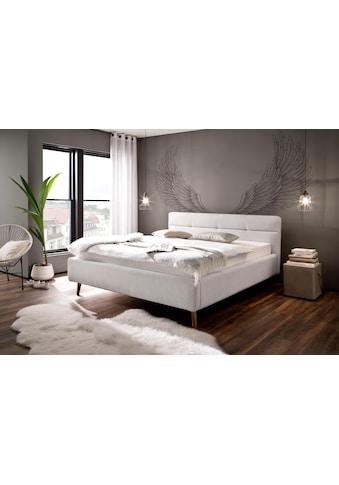 meise.möbel Polsterbett »Lotte« kaufen