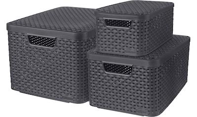 Curver Aufbewahrungsbox »Style«, (Set, 3 St.), mit Deckel, anthrazit, 7/13/18 Liter kaufen