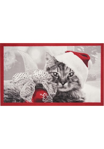 HANSE Home Fußmatte »Christmas Cat«, rechteckig, 7 mm Höhe, Schmutzfangmatte, In- und... kaufen