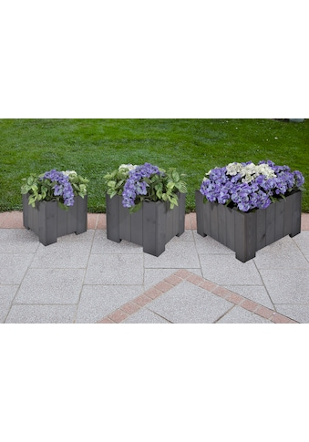 GASPO Blumenkasten »Wels«, (Set, 3 St.) kaufen