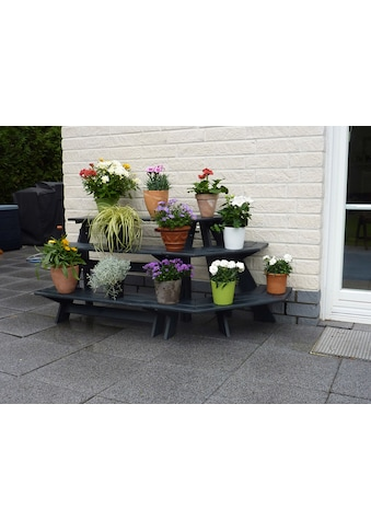 promadino Blumenständer »Blummentreppe Anja«, mit Eckelement, BxTxH: 137x59x62 cm kaufen