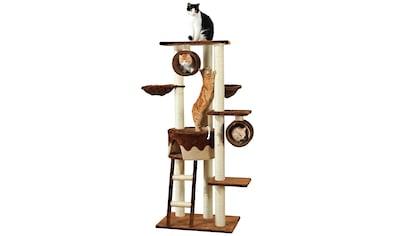 SILVIO DESIGN Kratzbaum »Merlin«, BxH: 70x168 cm kaufen
