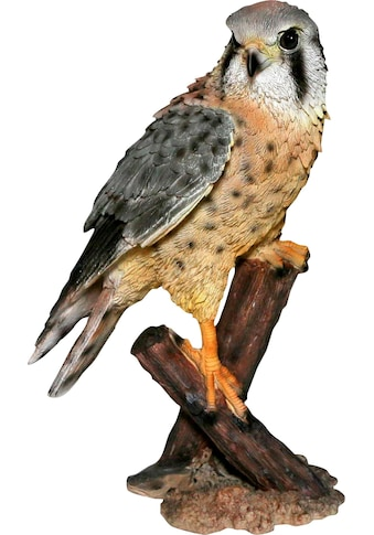 Home affaire Dekofigur »Falke auf Baumstumpf sitzend« kaufen