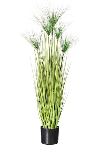 Creativ green Kunstgras »Miscanthus Cyperus« (1 Stück) kaufen