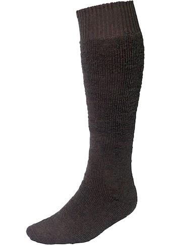 Set: Socken »Vollplüsch«, 2 Paar, grün kaufen