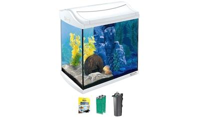 Tetra Aquarium »AquaArt LED Discovery Line«, BxTxH: 39,5x28x43 cm, 30 l kaufen
