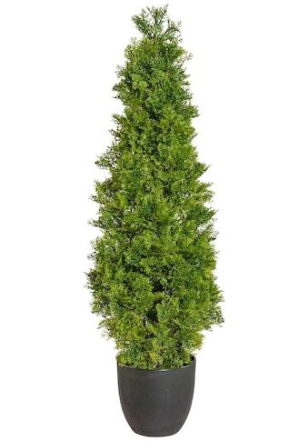 Creativ green Kunstpflanze »Zypressenpyramide«, im Kunststofftopf kaufen