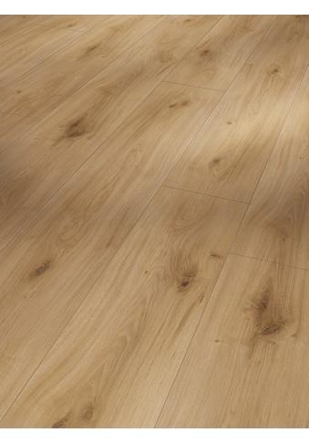 PARADOR Laminat »Basic 600  -  Eiche Horizont Natur«, 1285 x 243 mm, Stärke: 8 mm kaufen