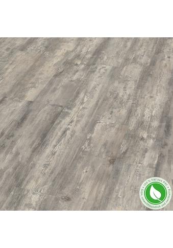EGGER Designboden »GreenTec EHD021 Zapulla Pinie« kaufen