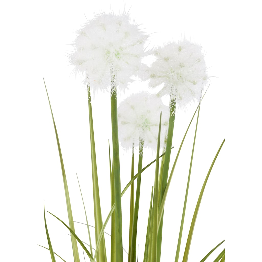 I.GE.A. Kunstpflanze »Pusteblumegras in Wasserhyazinthentopf«