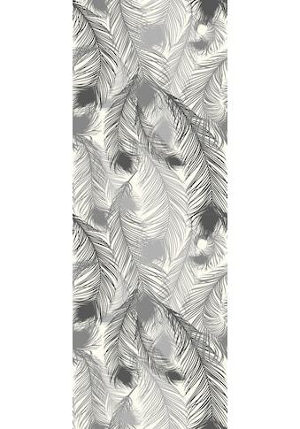 QUEENCE Vinyltapete »Federn - Grau«, 90 x 250 cm, selbstklebend kaufen