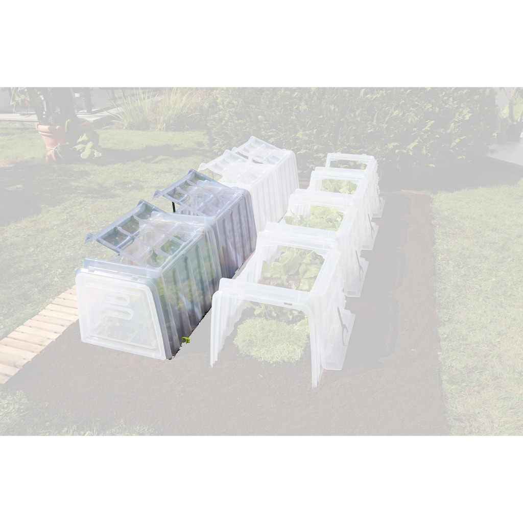 Beckmann Pflanztunnel »Größe 2«
