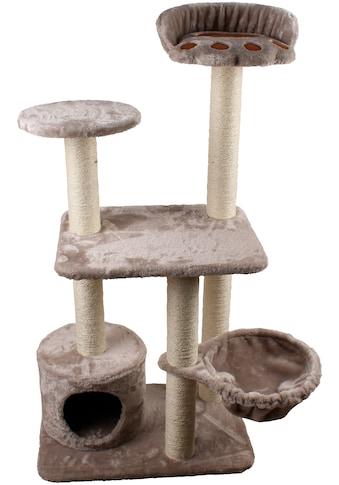 SILVIO design Kratzbaum »Molly«, hoch, BxTxH: 40x60x116 cm kaufen