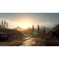 Days Gone PlayStation 4