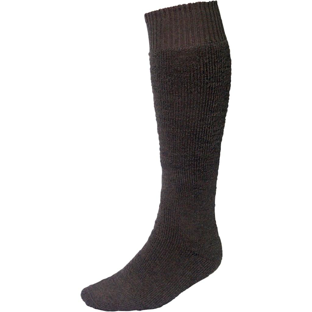 Socken »Vollplüsch«, (Set, 2 Paar), grün