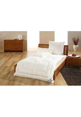 f.a.n. Schlafkomfort Baumwollkissen »African Cotton«, (1 St.) kaufen