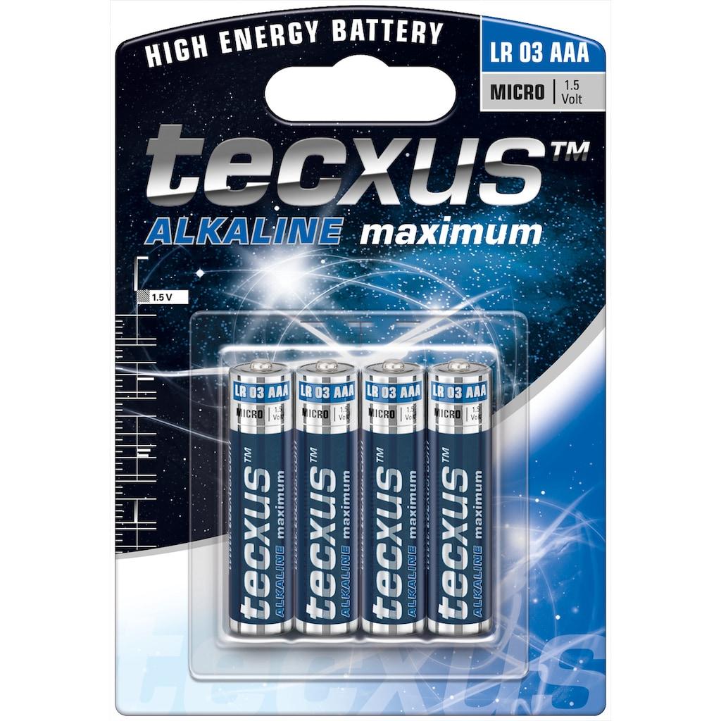 tecxus Batterie »LR03/AAA (Micro)«, (4 St.), Tecxus Alkaline maximum
