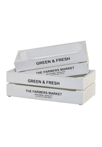 Creativ home Kiste »Green&Fresh« (Set, 2) kaufen