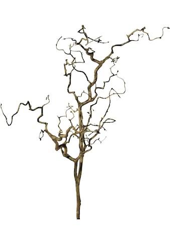 Creativ green Kunstzweig »Zweig Korkenzieherhasel« (1 Stück) kaufen