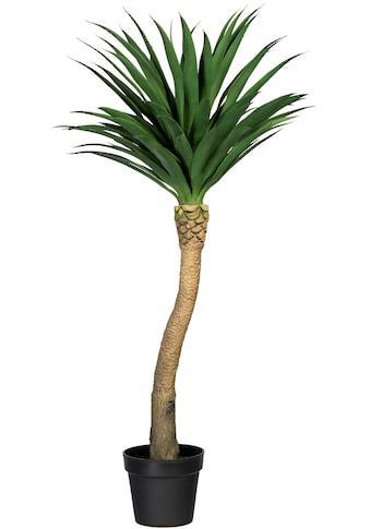 Creativ green Künstliche Zimmerpflanze »Yuccapalme Hochstamm« (1 Stück) kaufen