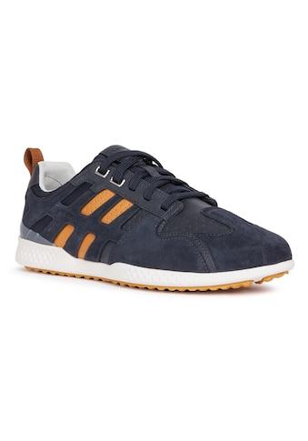 Geox Sneaker »SNAKE«, mit gepolstertem Schaftrand kaufen