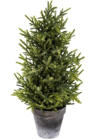 my home Kunstbaum »Tannenbäumchen«, Glitter, Höhe 50 cm kaufen