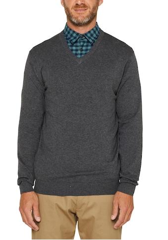 Esprit Strickpullover, in Passform gestrickte Schnittteile kaufen