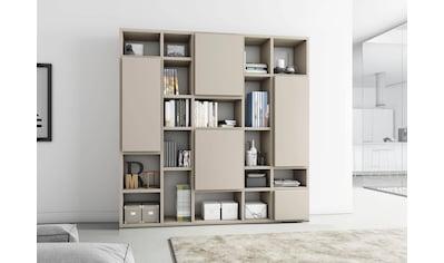 Raumteilerregal »TORO 530-1«, Breite 224 cm kaufen