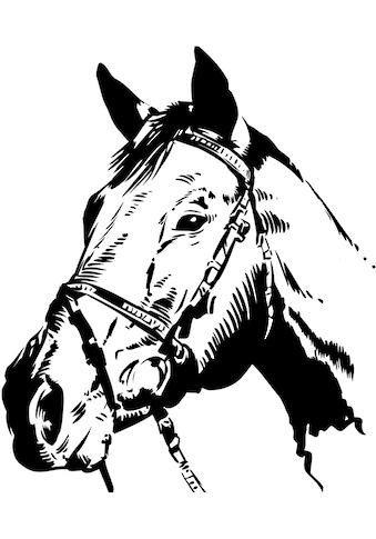 Wandtattoo »Pferdekopf« kaufen