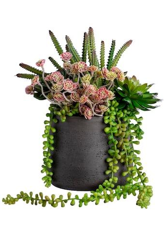 Blütenwerk Kunstpflanze »Greens Single Medium« kaufen