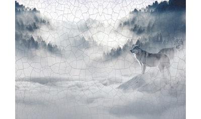 CONSALNET Papiertapete »Wolf im Nebel«, in verschiedenen Größen kaufen