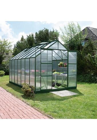 KONIFERA Gewächshaus »Titania 11500«, (Set, mit 4-tlg. Zubehör) kaufen