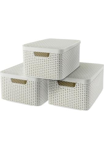 Curver Aufbewahrungsbox »Style Box M«, (Set, 3 St.), creme kaufen