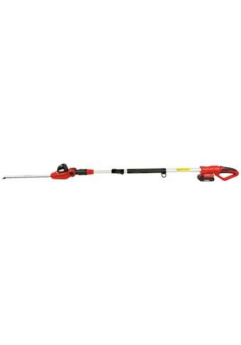 GRIZZLY Akku - Heckenschere »AHS 2020 T - Lion«, 41 cm Schnittlänge, mit Akku und Ladegerät kaufen
