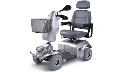 DIETZ® REHA-PRODUKTE Elektromobil »Agin«, 6 km/h, 6km/h kaufen