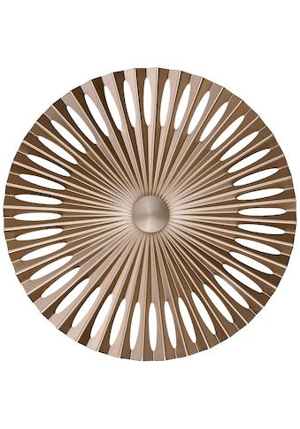 Brilliant Leuchten Phinx LED Wandleuchte 40cm braun/Kaffee kaufen