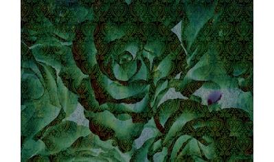 CONSALNET Papiertapete »Abstrakte Pflanze«, in verschiedenen Größen kaufen
