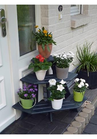 PROMADINO Blumentreppe »Anja«, Eckelement, BxTxH: 87x59x62 cm kaufen