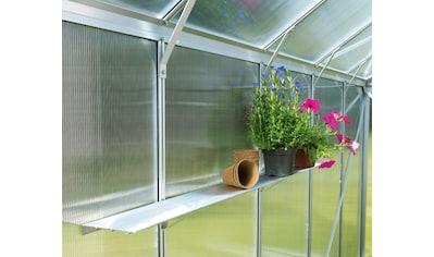 VITAVIA Wandregal , LxT: 122x15 cm, für Gewächshäuser, silberfarben kaufen
