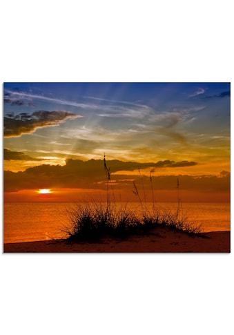 Artland Glasbild »Herrlicher Sonnenuntergang«, Sonnenaufgang & -untergang, (1 St.) kaufen