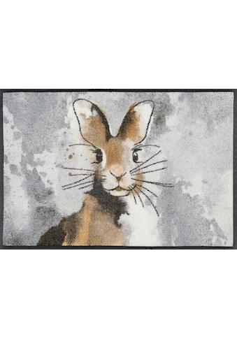 wash+dry by Kleen-Tex Fußmatte »Hopps«, rechteckig, 7 mm Höhe, Schmutzfangmatte, In-... kaufen