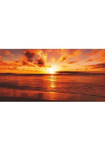 Home affaire Glasbild »idizimage: Schöner tropischer Sonnenuntergang am Strand« kaufen