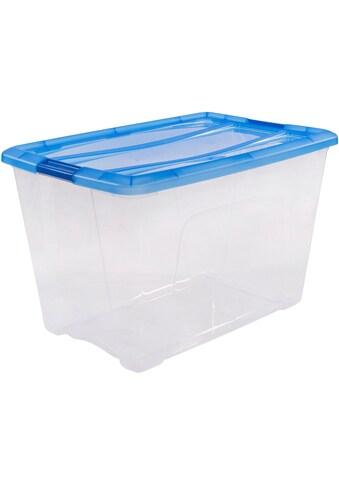 IRIS OHYAMA Aufbewahrungsbox »NTB60« kaufen