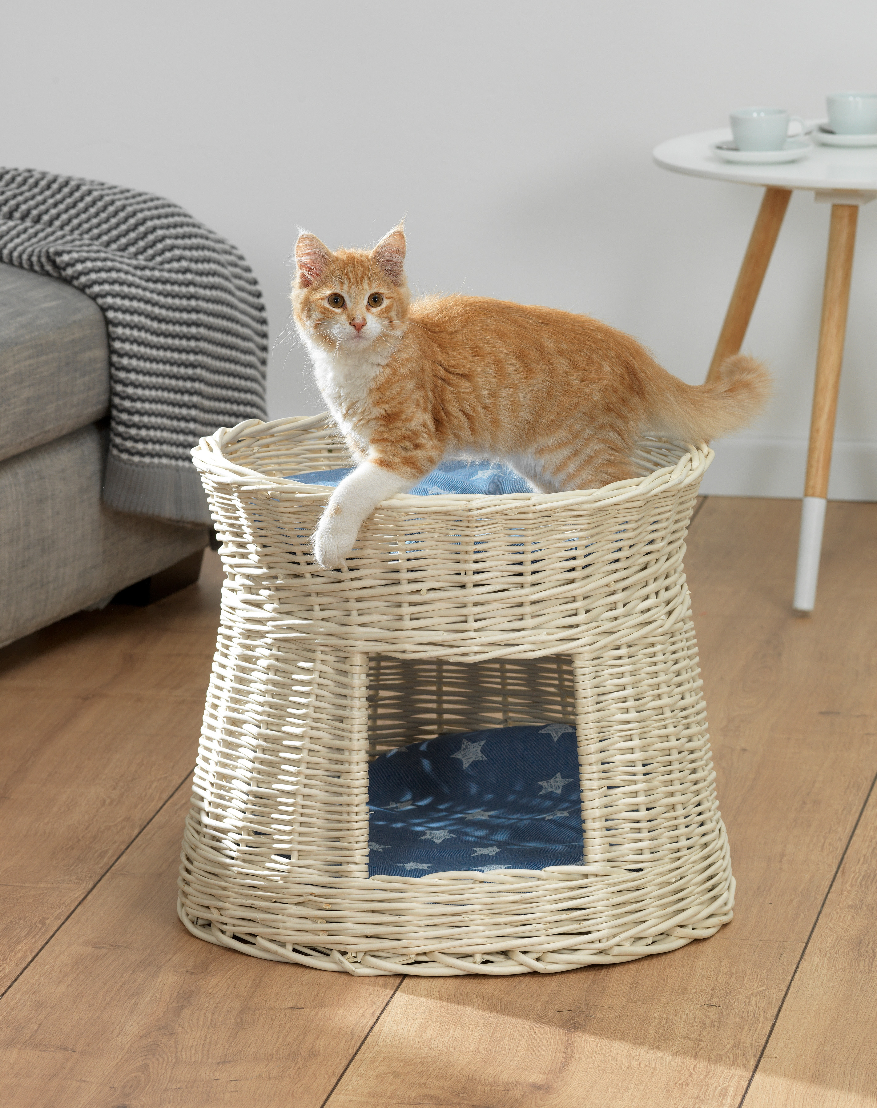 Silvio Design Katzen-Korbturm »Starlett« inkl. Kissen   Garten > Tiermöbel > Katzenkörbe   Weiß   SILVIO DESIGN
