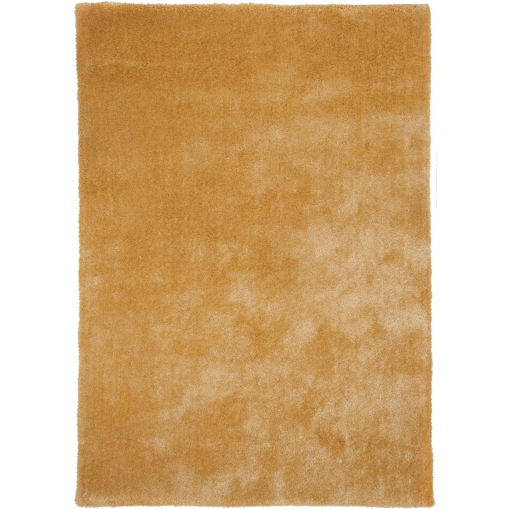 THEKO Hochflor-Teppich »Alessandro«, rechteckig, 25 mm Höhe, besonders weich durch Microfaser, Wohnzimmer