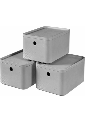 Curver Aufbewahrungsbox »BETON S«, (Set, 3 St.), stapelbar, je 4 Liter kaufen