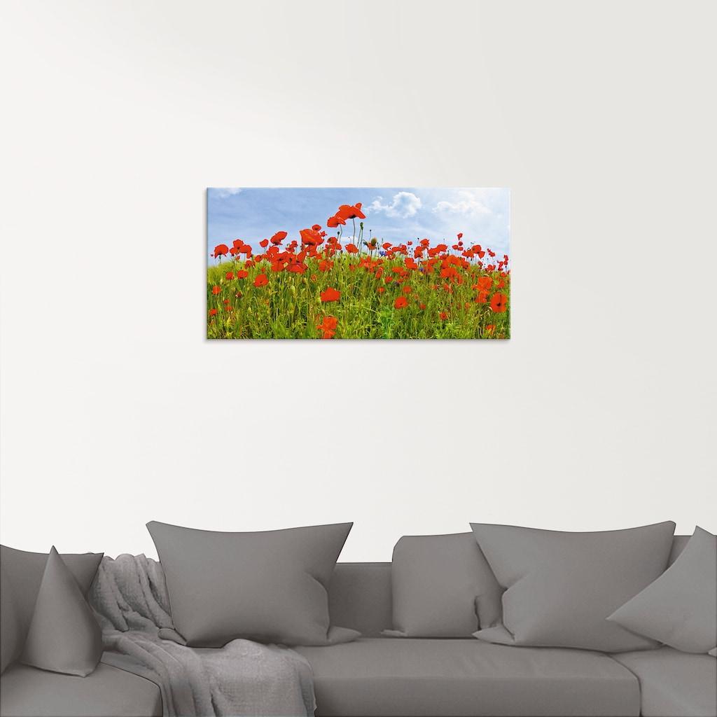 Artland Glasbild »Mohnblumen Panorama«, Blumen, (1 St.)