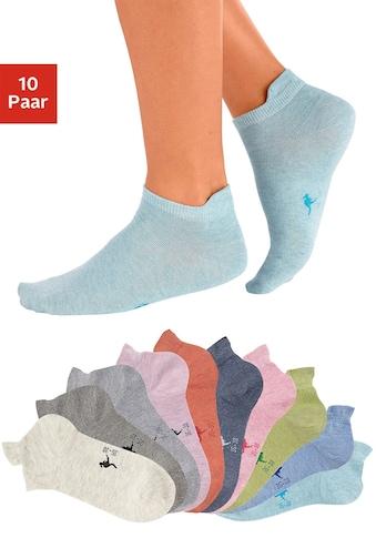 KangaROOS Sneakersocken (10 Paar) kaufen