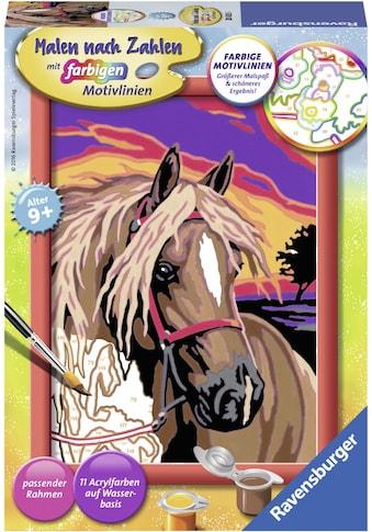 Ravensburger Malen nach Zahlen »Pferdetraum«, Made in Europe, FSC® - schützt Wald -... kaufen
