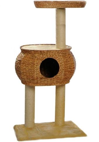 SILVIO design Kratzbaum »Cestino«, hoch, BxTxH: 57x45x98 cm kaufen